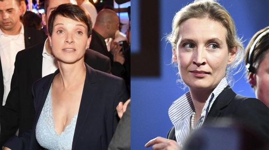 Frühere AfD-Chefin: Frauke Petry - die Einzelkämpferin