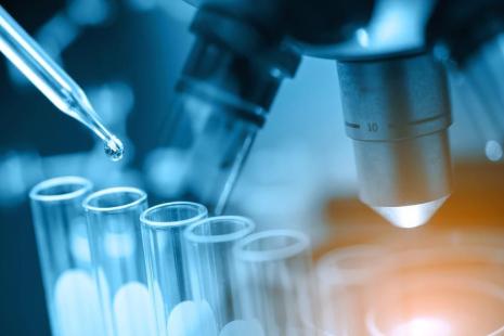 Desarrollan óvulos humanos en el laboratorio por primera vez